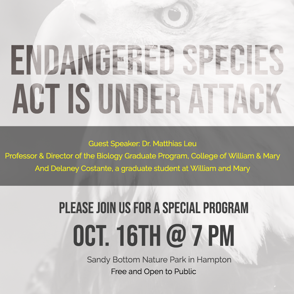 Graphic for Sierra club meeting. Image of Eagle